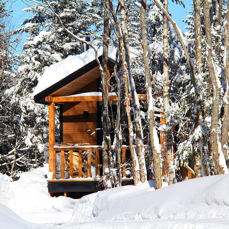 montana-hiver